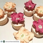 Que lindo estes Cupcakes Inspirao encontrandoideias